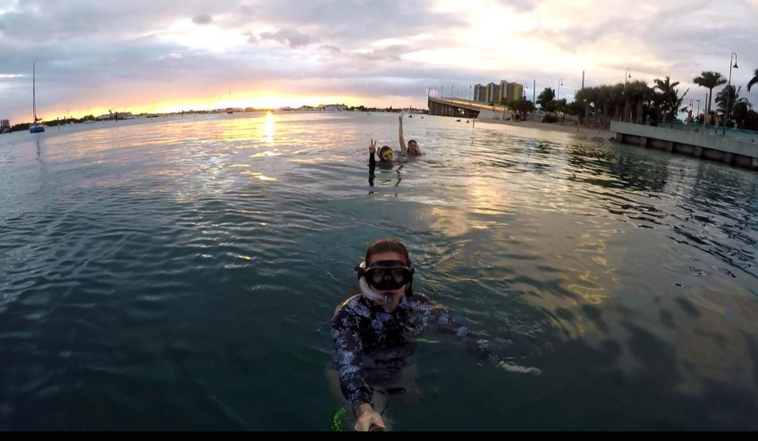 Sunset snorkling at phil foster