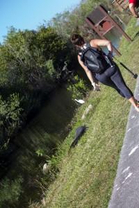 Walking Shark Valley