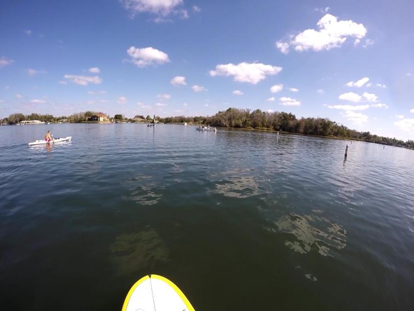 Kings Bay Crystal River
